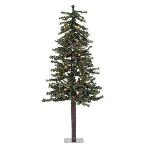 Alpine Christmas Trees Amazon Com