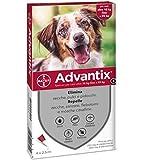 Recensione Advantix Spot-on per Cani dai 10Kg ai 25Kg