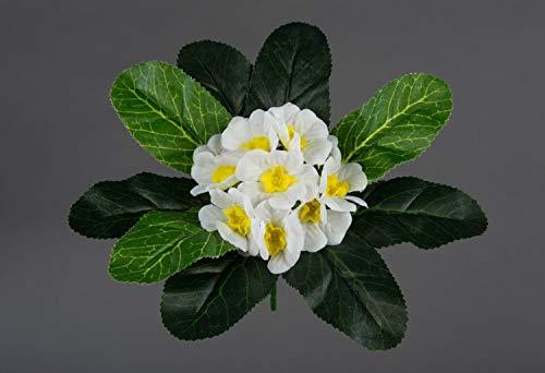 Seidenblumen Roß Primelbusch 20cm weiß FI Kunstpflanzen Kunstblumen künstliche Primel Pflanzen Blumen