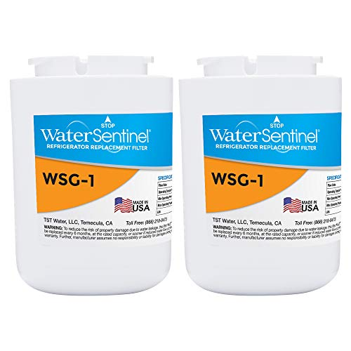 WaterSentinel WSG-1 Refrigerator Replacement Filter: Fits GE, MWF Filters (2-Pack),Blue