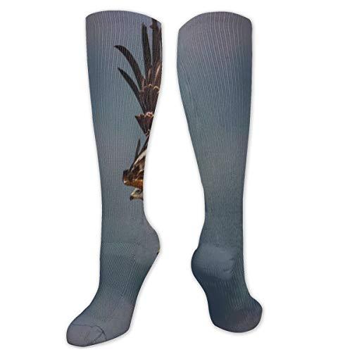 Calcetines de poliéster y algodón por encima de la rodilla, retro, unisex, muslo, botas...