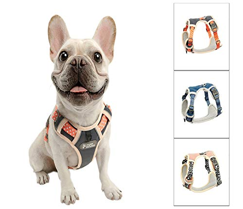 Generies Nylon Dog Harness No Pull Adjustable French Bulldog Puppy Outdoor Walking Harness Reflective Pet Vest for Small Medium Large Dogs (Blue, M)