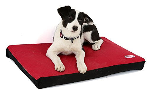 Komfy K9 Foam Waterproof Crate Bed | Cat & Dog Mattress with Washable Easy Removable Cover Pet Bedding for Crate or Kennel