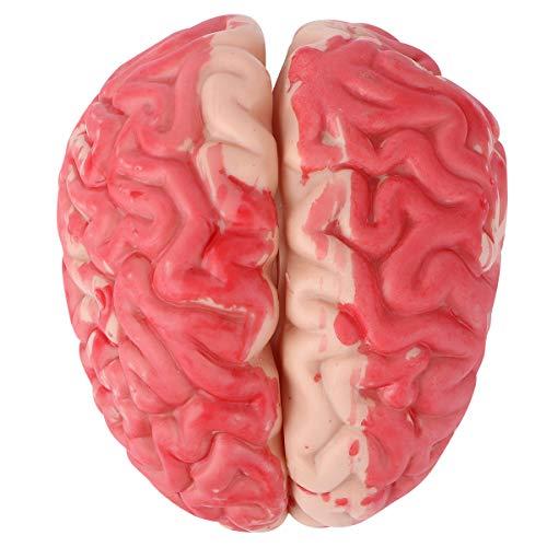 NUOBESTY Cerebro de Juguete de Halloween, Cerebro Blando Fidget Splat Ball Prank Tool Simulación de Juguete Sangre Artificial Cerebro Juguete Divertido para la Fiesta de Halloween Festival
