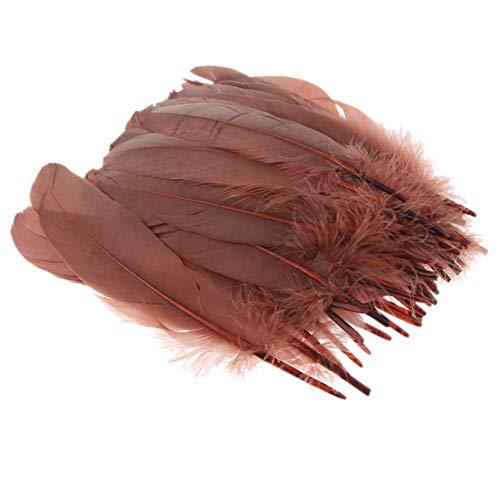 Suneast 100 piezas de plumas de ganso naturales para manualidades, atrapasueños, manualidades, bodas, fiestas, festivales, decoración de baby shower, decoración – 5 – 8 cm, color negro, café, 12-18cm