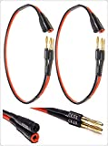 Speaker Cable With Banana Jacks - Best Reviews Guide