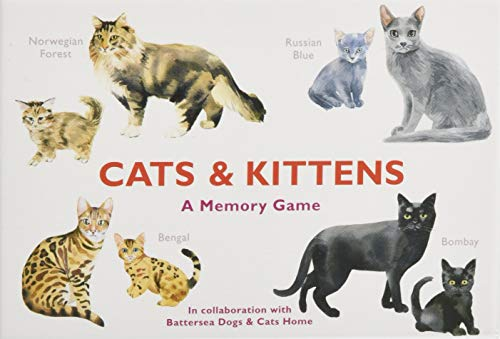 Cats & Kittens. A Memory Game