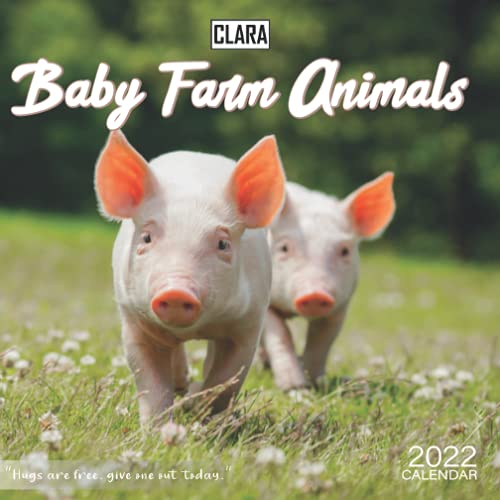 Baby farm animals 2022 Calendar: Special gifts for all ages and genders with 18-month Mini Calendar 2022