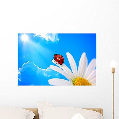 Wallmonkeys FOT-9174071-24 WM158006 Ladybird on Daisy Against Blue Sky with Sun Peel and Stick Wall Decals (24 in W x 16 in H), Medium