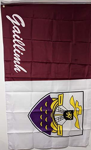 Ireland Grafschaft Galway Flagge, 15,7 x 91,4 cm
