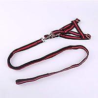XIXI ペット犬ハーネスリーシュセットナイロン反射アジャスタブル強いキャンバス小中型犬パーフェクトの毎日のトレーニングウォーキング (Color : Red, Size : M)