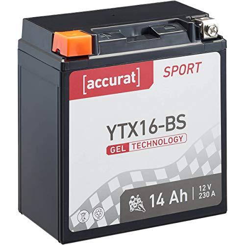 Accurat Motorradbatterie Sport YTX16-BS 14 Ah 230 A 12V Gel Technologie Starterbatterie in Erstausrüsterqualität zyklenfest sicher lagerfähig wartungsfrei