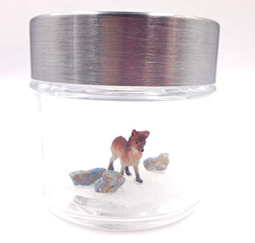 World's Smallest Pet Fox with Adoption Certificate and Window Lid