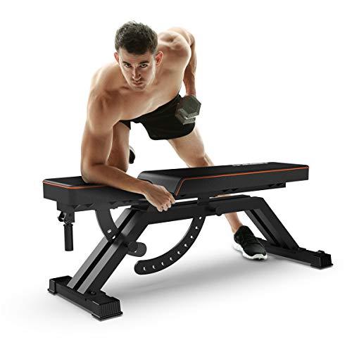 FEIERDUN FLYBIRD Adjustable Bench, Utility Weight Bench Full Body Workout- Multi-Purpose Foldable Incline/Decline Benchs