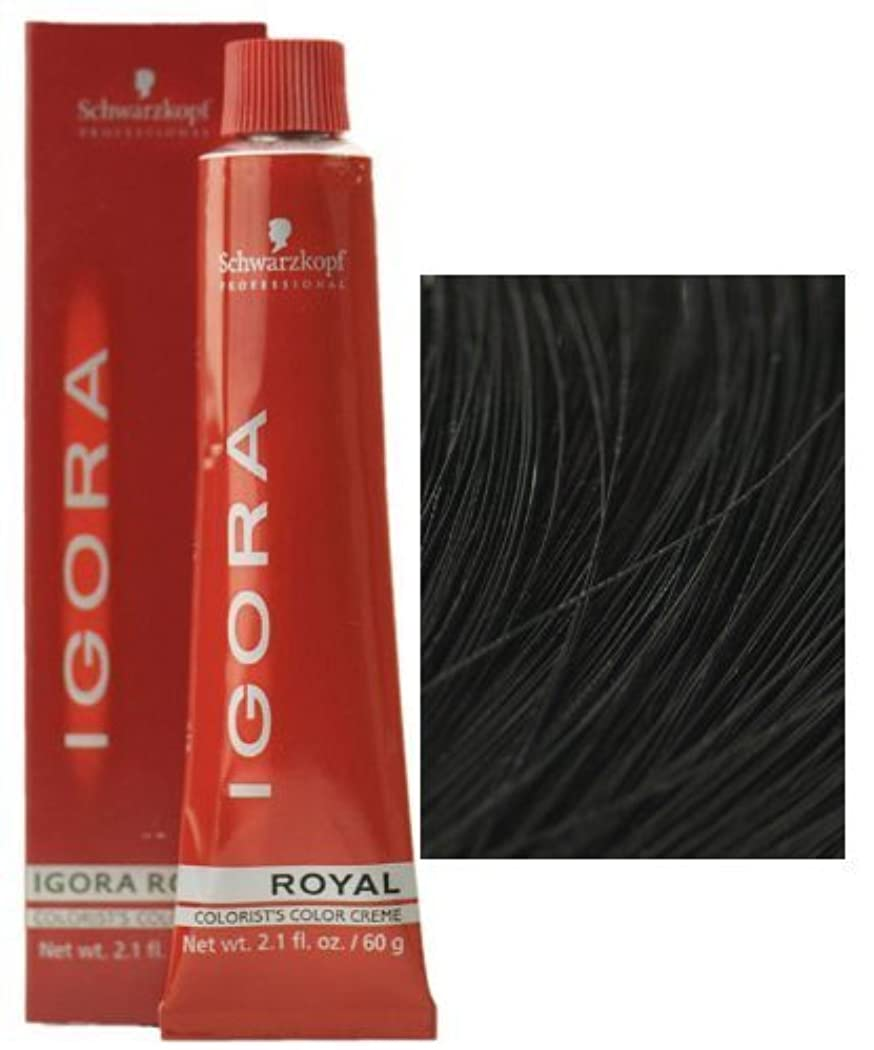 有彩色の供給はぁSchwarzkopf Professional Igora Royal Hair Color - 1-0 Black [並行輸入品]