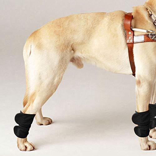 SALUTUYA 2 Piezas, Soporte para piernas de Perro, Universal para Gatos y Perros,(Black, M)