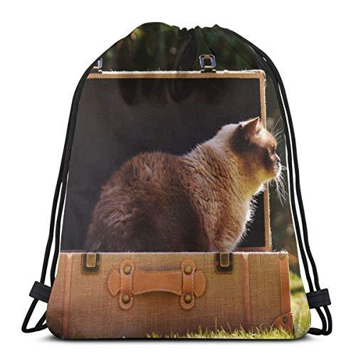 TYSS - Maleta de equipaje para gatos británicos de pelo corto con cordón personalizado bolsas de hombro bolsa de gimnasio, mochila de viaje ligera para hombre y mujer, 42,8 x 35,5 cm