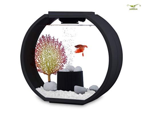 Zhangu Products Deco O Mini Designer Aquarium AA10L-OGD Komplettset - 10L - schwarz