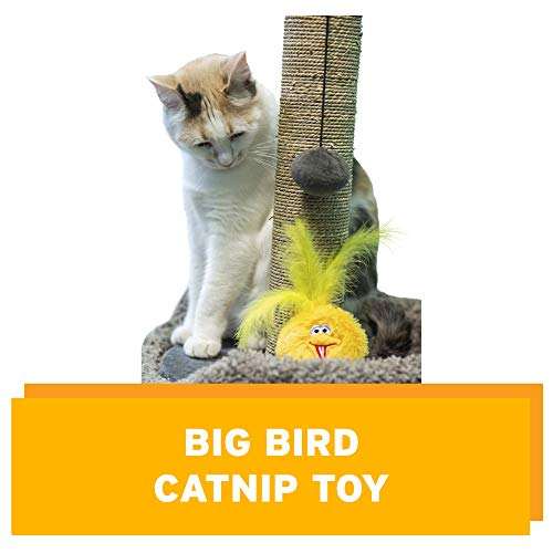 Pet Krewe Sesame Street Big Bird Catnip Toy, One Size