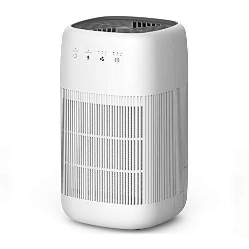 Luftreiniger und Luftentfeuchter Afloia Q10 2-in-1, H13 HEPA Filter, Touch Control, leiser Luftreiniger (20㎡) für Raucher, Allergien, Tierhaarschuppen, Luftentfeuchter (18㎡) für Schlafzimmer Kind Büro