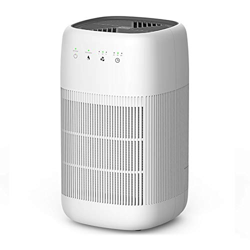 Air Purifier and Dehumidifier, Afloia Q10 True HEPA Air Purifier, H13 HEPA Filter, Touch Control, Ultra Quiet Air Purifier(200 sq.ft.) for Smokers, Allergies, Pet Hair Dander, Dehumidifier(160 sq.ft.)
