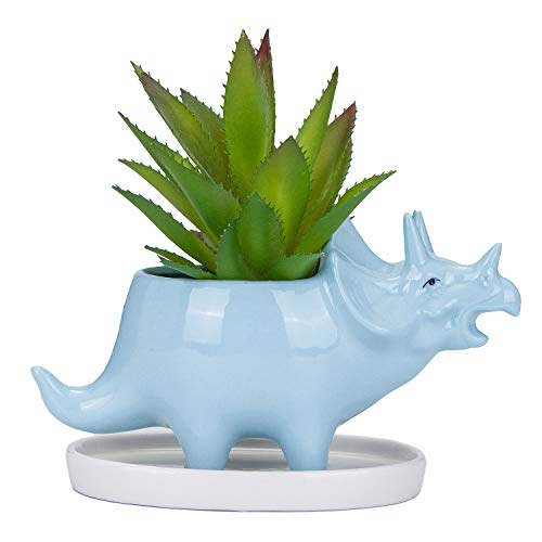 VanEnjoy Desktop Cute Cartoon Blue Triceratops Dinosaur Ceramic Succulent Planter with Tray, Bonsai Cactus Flower Pot Vase Holder Decorative Organizer