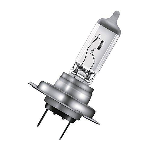 Osram 64210-01B Glühlampe, Weiß (Weiß), Einzelblister