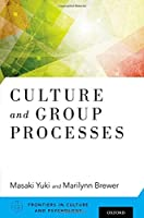 Culture and Group Processes (Frontiers of Culture and Pyschology)