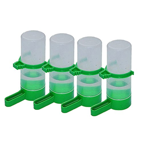 patgoal mangeoires para pájaros–juego de 4pájaros de plástico de semillas y dispensador de agua para pájaros, transparente