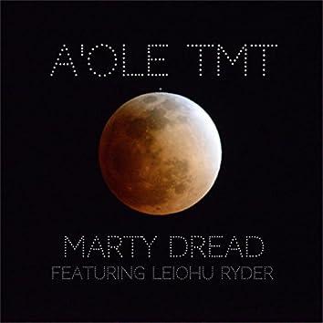 A'ole TMT (feat. Leiohu Ryder)