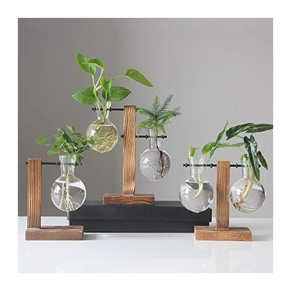 Water Planting Glass Vase,Clear Glass Vase Hanging Plant Terrarium with Retro Solid Wooden Stand for Hydroponics Plants… 3 ♚MATERIAL-Wooden+Glass.Great for floral arrangement, home decoration as well as various gift ideas ♚ DESIGN - Vintage design,DIY Planter with mini bulb shape vase in wooden stand. Smooth surface, good permeability, beautiful style ♚DECORATION- Fill with small plants,goldfish,or other decorative objects like beach sand and shells you collected and use as an eye-catching decorative accent for any space. Ideal for home, office, garden, wedding or holidays as a decoration.