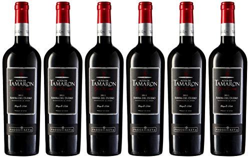 Altos De Tamaron Gran Reserva Tinto D.O. Rib. Duero Vino - Paquete de 6 x 750 ml - Total: 4500 ml