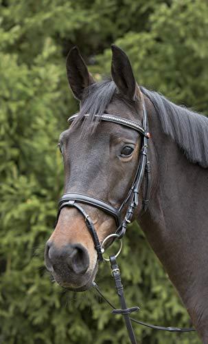 Kieffer Trensenzaum Ultrasoft schwarz englisches Reithalfter Stirnband mit Perlen gepolstertes Genickstück Professional, Größe Pferd:VB