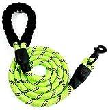 XUDAKJ 150 cm Correas para Perros Nylon con Mango Acolchado Ajustable Negro Sólido Reflectante para Perros Grandes o Medianos (Verde)
