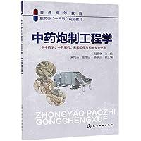 中药炮制工程学(陆兔林 )