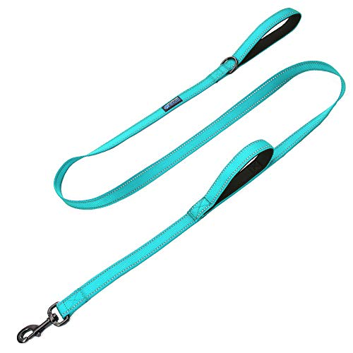 Max and Neo Double Handle Traffic Dog Leash Reflective - We Donate a Leash to a Dog Rescue for Every Leash Sold (Teal, 6 FT)