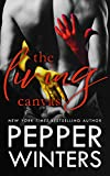 The Living Canvas (Master of Trickery Book 2) (English Edition)