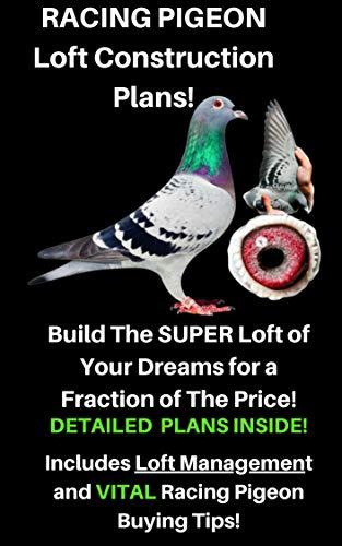 Racing Pigeon Loft Construction Plans: Pigeon Avairy (English Edition)