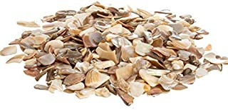 Nautical Crush Trading Crushed Sea Shell Chips | Tan Pearlized Large Crushed Sea Shells | Bulk Pearlized Sea Shell Pieces
