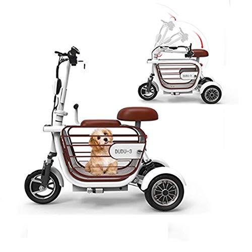 AA100 Elektro 3-Rad-Roller, Faltbare Elektro-Auto/Portable/behindert Erwachsene Outdoor-Freizeit-Roller mit Haustiere Käfig 48V13A / 45km Akkulaufzeit