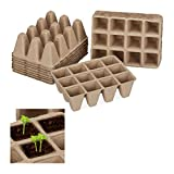 Relaxdays Macetas biodegradables, Kit semillero, Cuadradas, Celulosa, Altura de 5 cm, 204 Uds, Beige