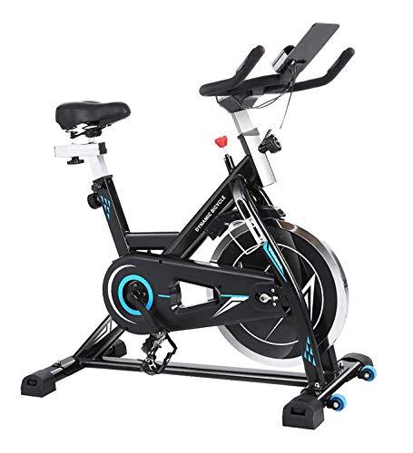 ANCHEER Heimtrainer - Stationäre Fahrräder, Fitnessfahrrad mit iPad-Halter, leise Indoor-Radfahrräder für das Heim-Fitnessstudio,maximales Gewicht 380 lbs