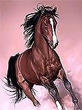 FJKEFJH Kits de Punto de Cruz Contado, caballo 40X50cm 14CT Conjunto de Kit de Punto de Cruz de Bordado DIY Tela a Mano Hilos de Color Dibujo de Aguja de paño de algodón