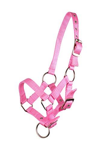 Fohlenhalfter Halfter Fohlen Nylonhalfter QHP 4 Fohlengrößen 6 Farben (Shetty Fohlen, rosa)