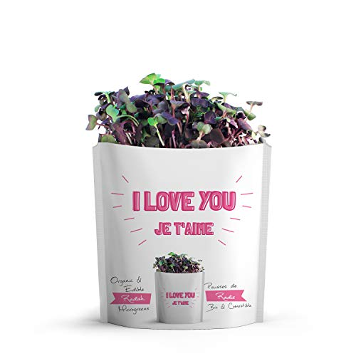 GIFT-A-GREEN I Love You Card | Love Greeting Card with Organic Microgreen Seeds! Like Post Cards, Simply Mail and Recipient Gets to Grow & Eat | Greeting Cards for All Occasions. Father's Day Card!