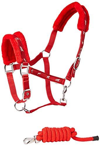 Cwell Equine - Collares de Pelo Acolchado con diseño de Caballo y Correa a Juego, Color Rojo
