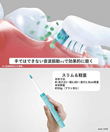 パナソニック電動歯ブラシドルツ青EW-DM62-A