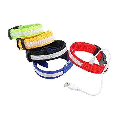 NINIWA Un paquete de collar de perro LED recargable por USB, collar de perro brillante para seguridad nocturna, collar de moda ligero para perros pequeños, medianos y grandes, tamaño S (color al azar)