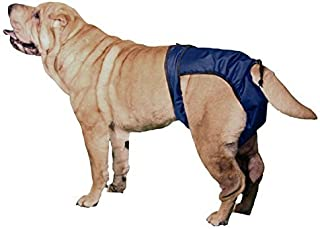 Best plastic pants for dogs Reviews