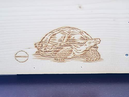 Qualität aus Niederbayern ARBRIKADREX Schildkröte Premium Schildkrötenhaus XXL (L:60cm; B.40cm; H:31cm) mit Sonnendach, Windfang, Einstellbarer Belüftung und Plexiglastor 18mm Vollholz Fichte